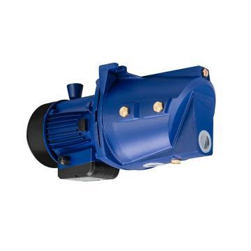 Yuken PV2R34-85-200-F-RAAA-31 Double Vane Pumps