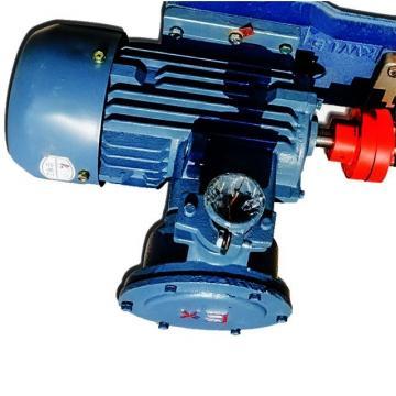 Sumitomo QT5133-125-16F Double Gear Pump