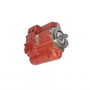 NACHI IPH-66B-100-125-11 Double IP Pump